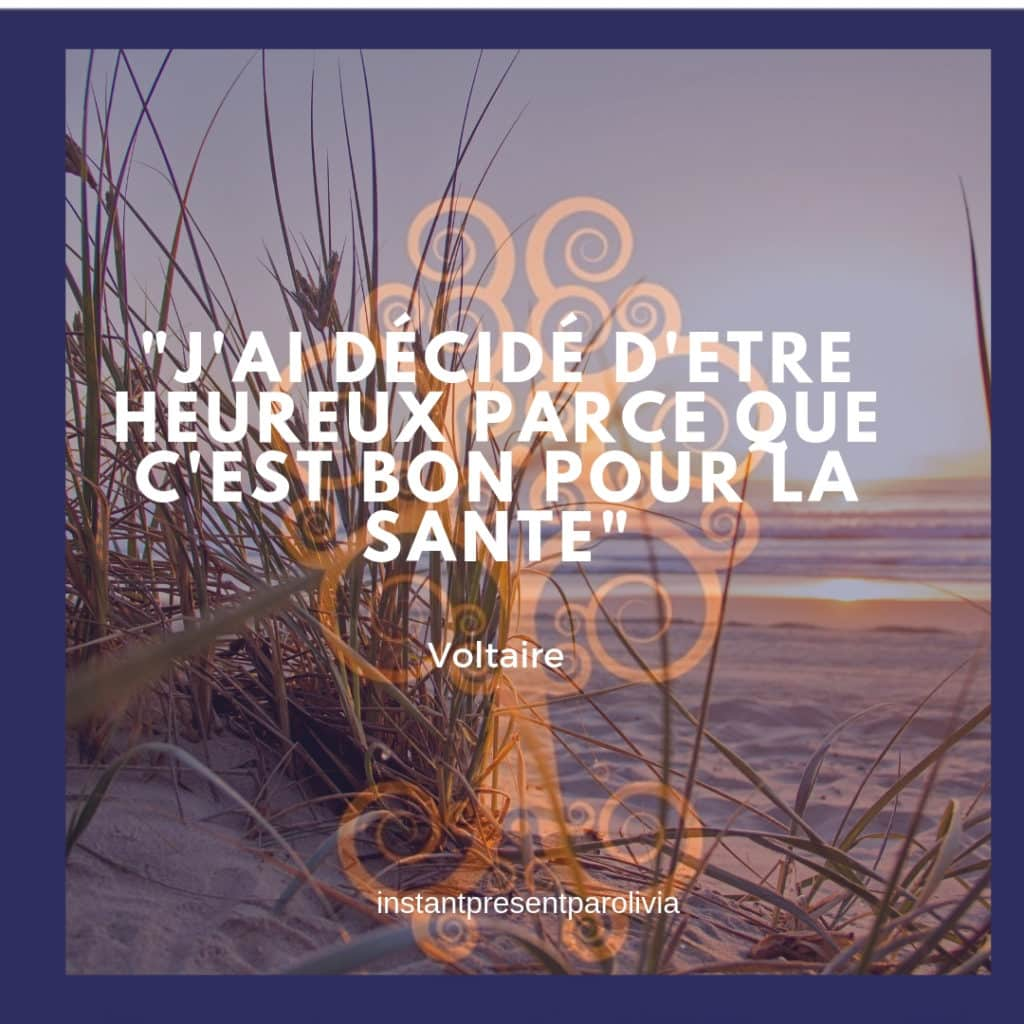 citation voltaire